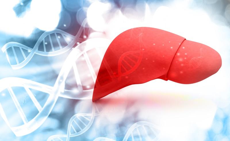 15 sintomas de que você está com gordura no fígado