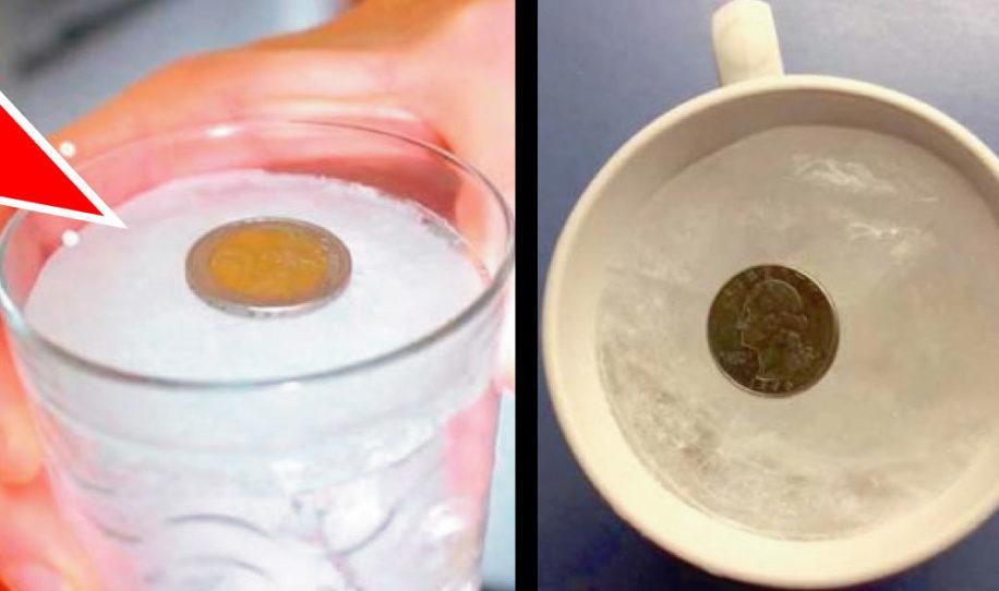 Cuando vayas a salir por varios días de tu casa, no olvides colocar una moneda en el congelador
