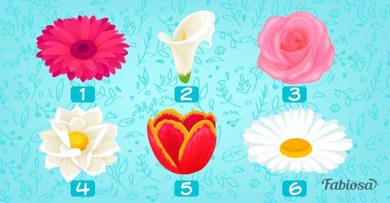 Escolha a flor que mais chamou a sua atenção e descubra algo sobre a própria personalidade!