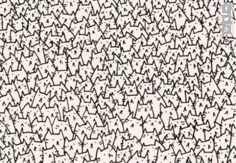 Casi imposible de resolver: encuentra al perro entre este montón de gatitos