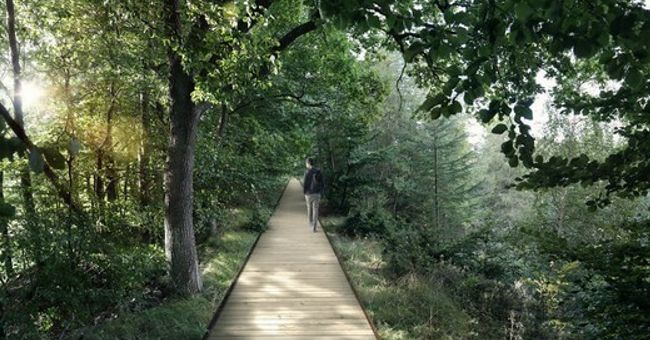 Essa passarela gigantesca no meio de uma floresta dinamarquesa talvez seja a coisa mais linda do país escandinavo