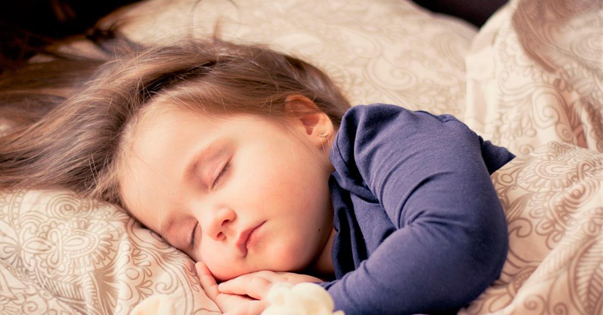 8 plantas que te ayudan a conciliar el sueño fácilmente