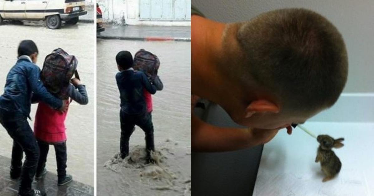 15 fotos que nos recuerdan que el hombre es bueno