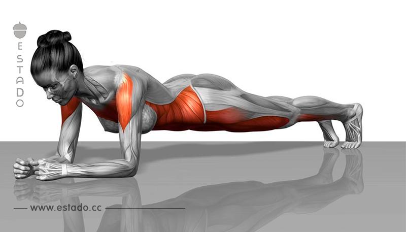 8 + Ejercicios que transformarán tu cuerpo en tan sólo unas semanas!
