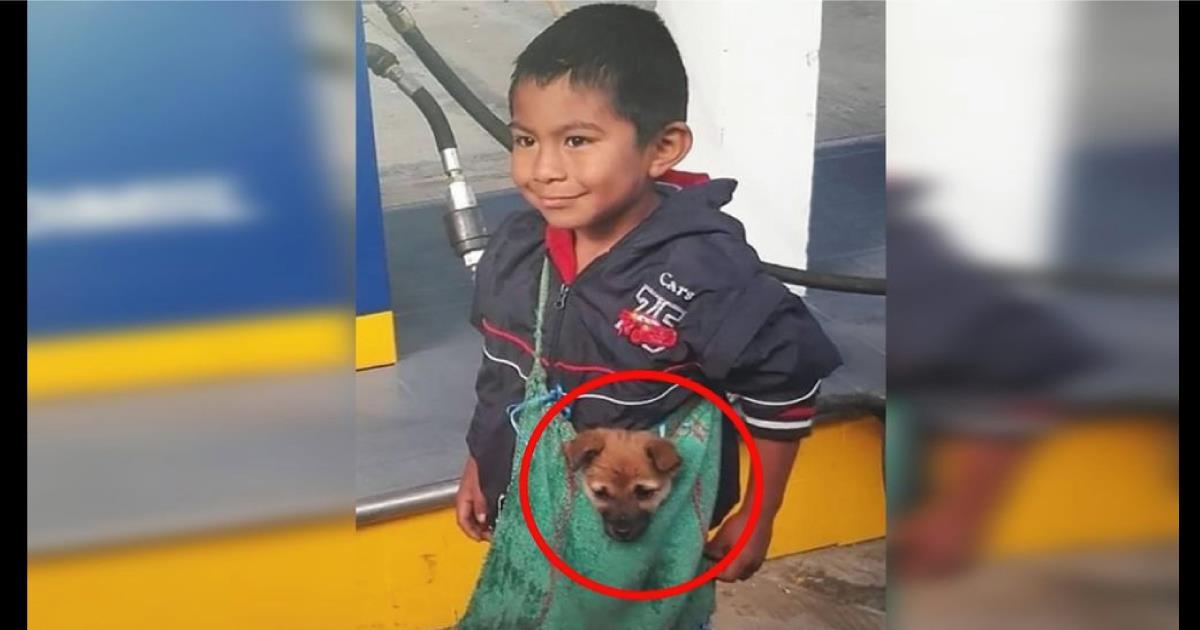 La triste historia detrás de la foto viral del niño que lleva a su perrito de la forma más adorable