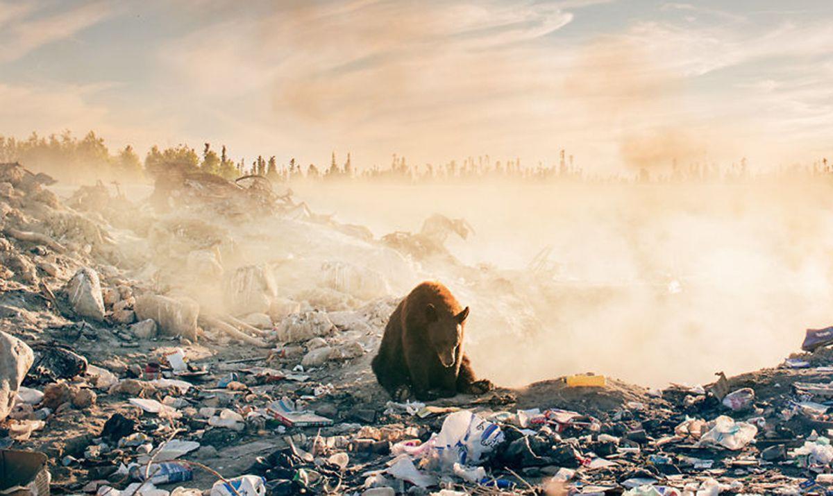 El autor de esta imagen afirma que es la fotografía más triste que ha hecho nunca • La nube de algodón