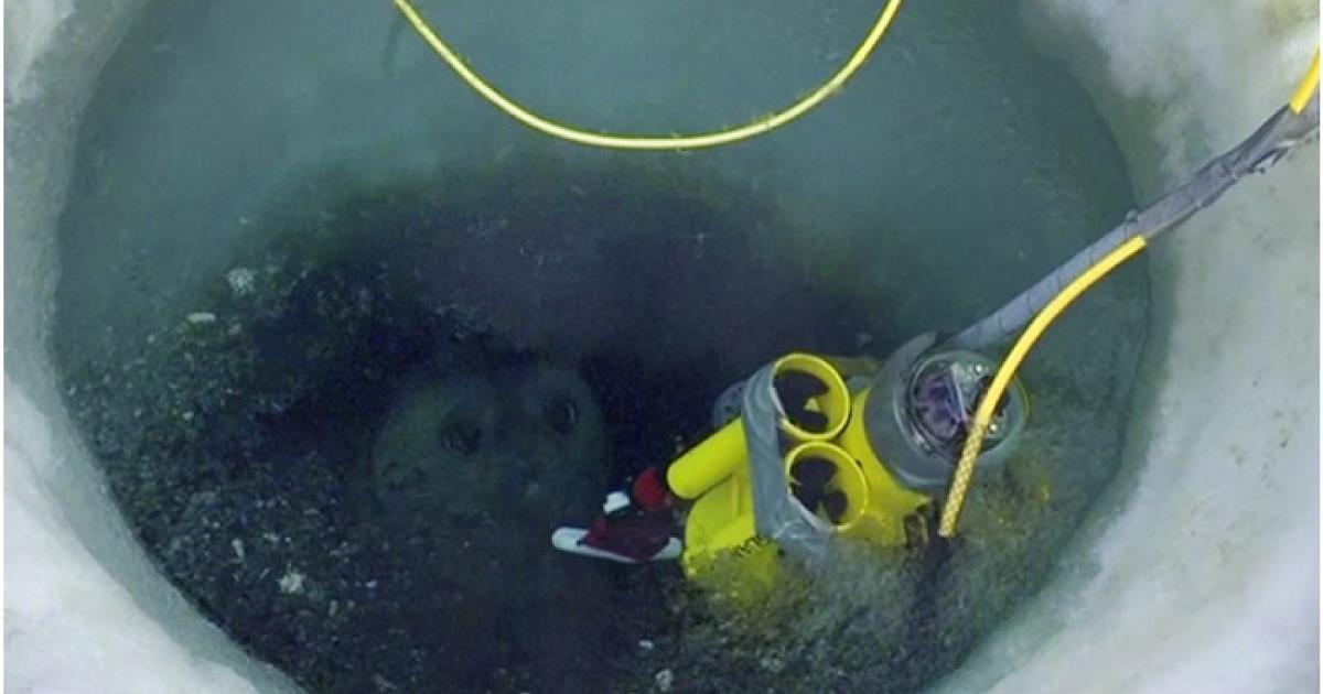 Por primera vez logran grabar lo que hay debajo del hielo antártico y es increíble