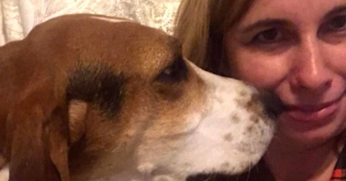Una mujer no comprende por qué su perra insiste en olfatear su rostro. El extraño comportamiento termina salvando su vida.