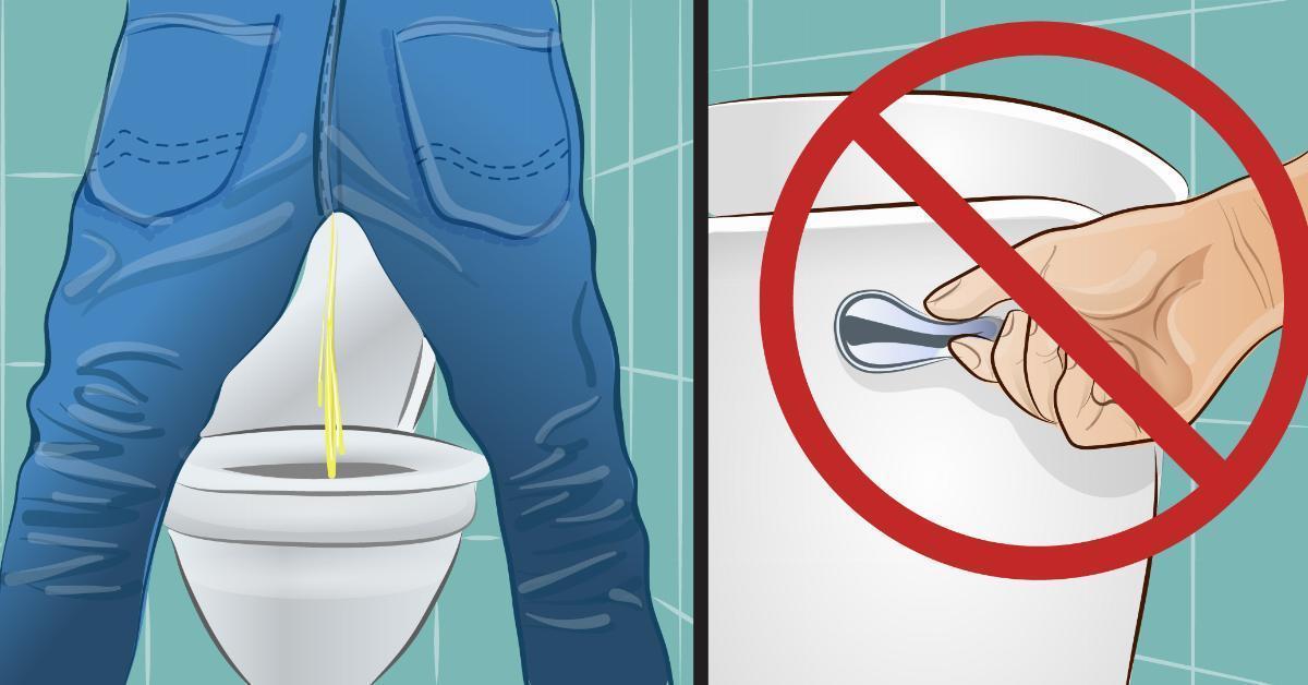 Seis razones para no bajar la palanca del agua después de hacer pipí