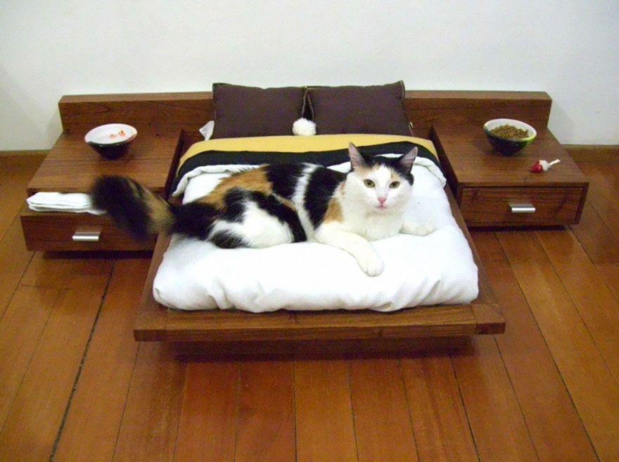 Diseños para que tu gato termine de hacerse con tu casa   Casas Increíbles