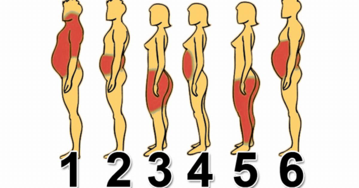 La zona del cuerpo donde acumules grasa revela problemas distintos