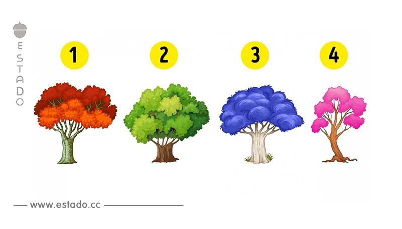 Elige un árbol para saber qué cambios te depara el Año Nuevo