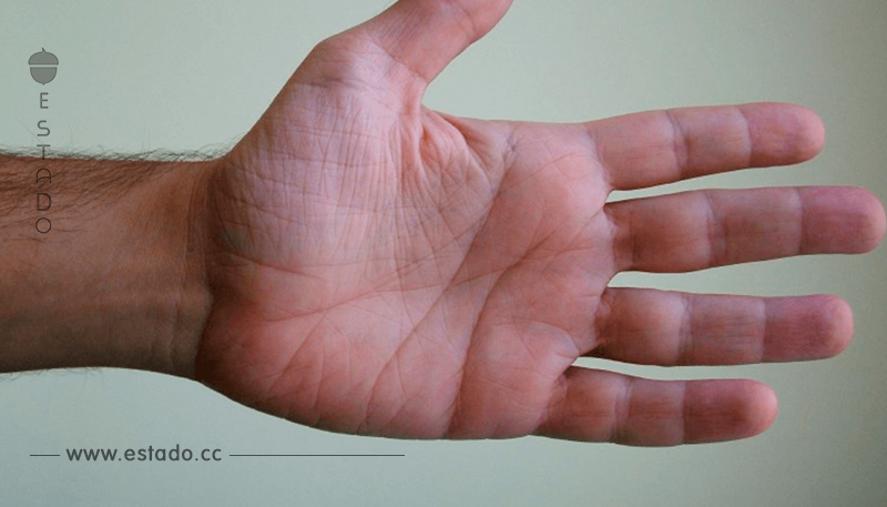 El tamaño de tus manos desvela tu personalidad