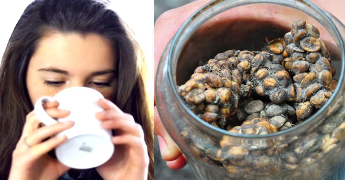El asqueroso ingrediente del café más caro del mundo