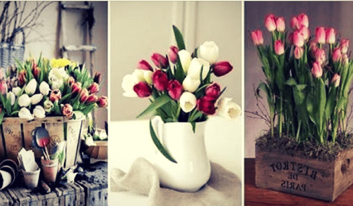 Nos Encantan Los Arreglos Florales Con Tulipanes Qué Te