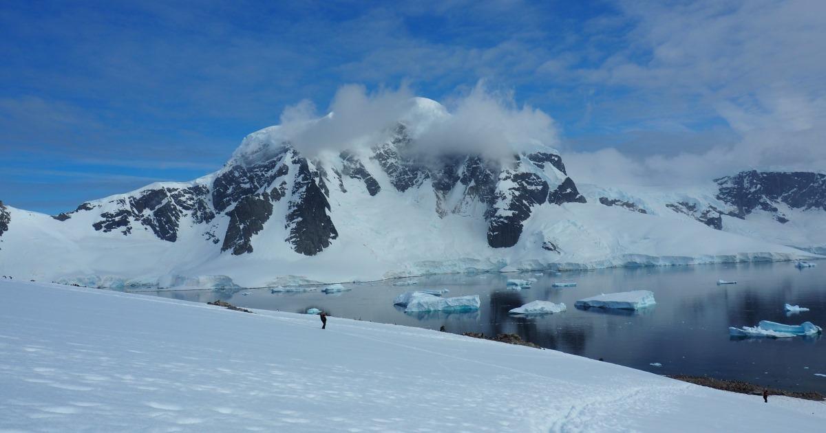 Proponen crear áreas marítimas protegidas a gran escala en la Antártida