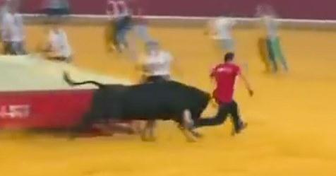 Un toro humilla a un hombre dejándolo desnudo ante toda la plaza de toros