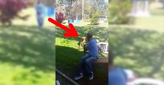 Reacción de un perro al reencontrarse con su dueño que había perdido 22 kilos