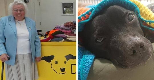 Esta mujer de 89 años ha tejido 450 mantas para los perros de un refugio, y es adorable