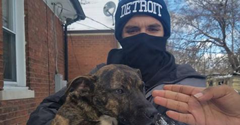 SIN EXPLICACIÓN: Mientras Blizzard se helaba de frió en la calle su dueños disfrutaban de su otra mascota en el interior de la casa