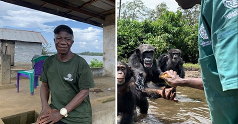 Abandonaron a 60 simios en una isla tras inocularles hepatitis. Su cuidador se quedó con ellos