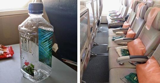 Cosas que puedes pedir gratis en el avión