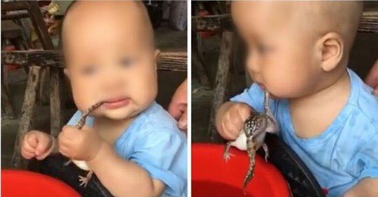 Bebé chupa un sapo vivo y genera reacciones encontradas en Internet