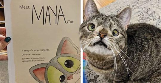 Maya una gatita con síndrome de Down que tiene su propio libro. Es adorable