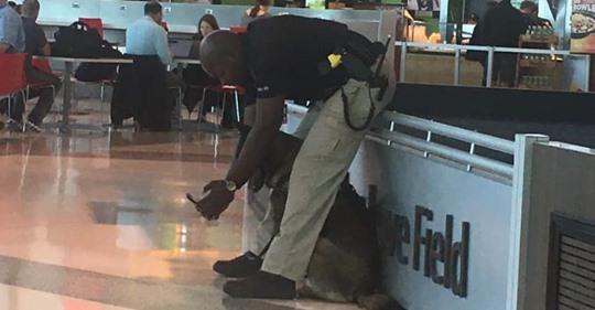 Mujer capta a un policía haciéndose selfies con su perro de servicio, y él responde mostrando las fotos