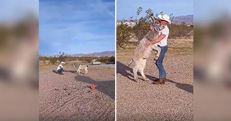 Un burro salvaje fue criado entre perros y se comporta como uno de ellos