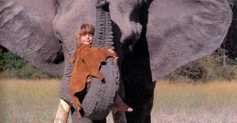 Conoce y envidia a Tippi, la niña que creció rodeada de animales