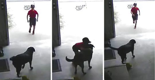 Una mujer se da cuenta de que un chico desconocido entra a hurtadillas en su garaje para robarle un abrazo a su labrador