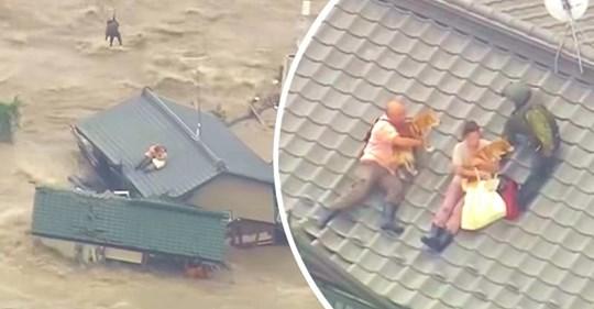 Se quedaron atrapados en el techo durante una inundación, pero no querían abandonar a sus perros