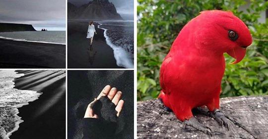 20 Imágenes que muestran el lado mas hermoso de la naturaleza
