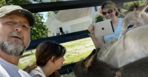 Programa especial conecta personas aburridas con animales mediante plataformas de videoconferencia