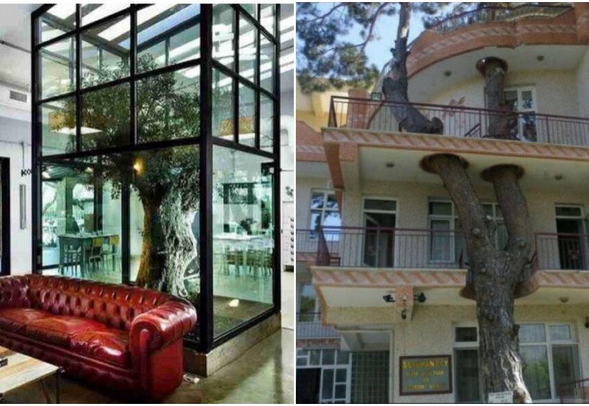 Las 12 mejores arquitecturas que se fusionan con la naturaleza para asombrarnos con su originalidad