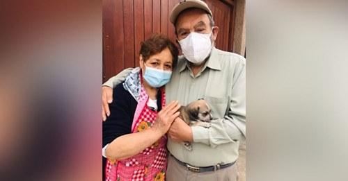 Abuelos logran por fin adoptar una cachorrita tras años siendo rechazados por ser mayores