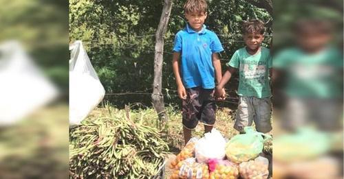 Los hermanos de 7 y 9 años que venden verduras en la calle asisten a la escuela por primera vez