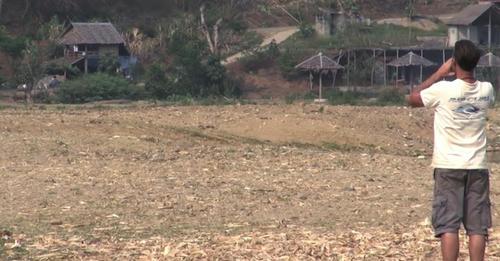 El hombre hace una llamada en un campo vacío y en tan solo unos segundos todo el mundo se queda atónito al ver a una manada corriendo hacia él