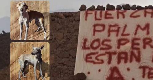 Aparece una pancarta en la zona de los perros desaparecidos de La Palma
