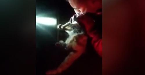 Un militar de la UME adopta al gato al que reanimó tras hallarlo asfixiado por las cenizas del volcán